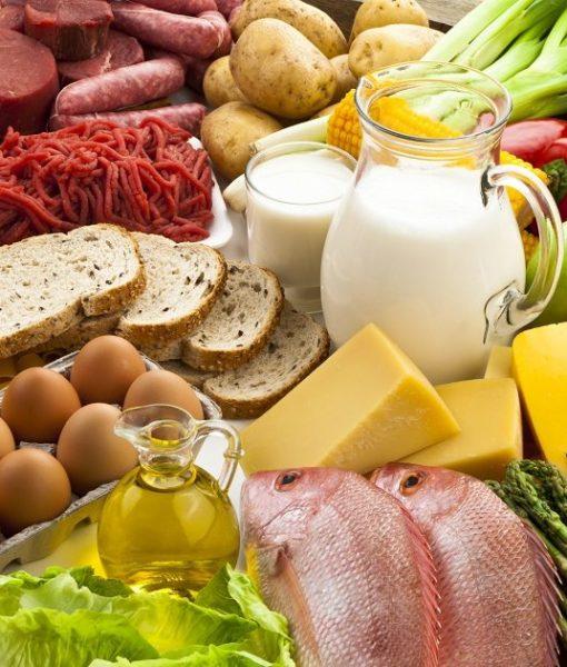 classificador-de-alimentos