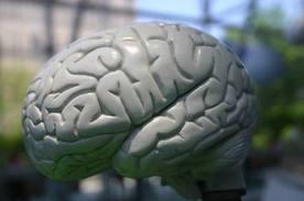 Desenvolvimento de pessoas com deficiência mental