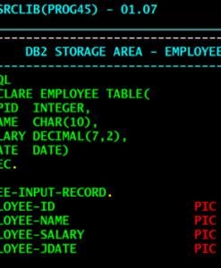 Desenvolvedor Mainframe