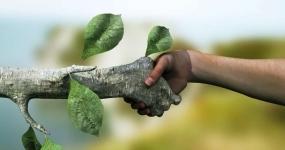 379_meio-ambiente-meio-ambiente-e-recursos-sustentaveis