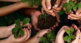 43_meio-ambiente-gestao-do-meio-ambiente-sustentabilidade-e-educacao-ambienta