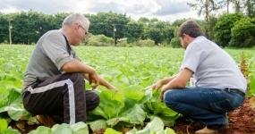 726_agricultura-assistencia-tecnica-e-extensao-rural-ater