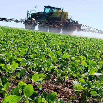 controle-de-pragas-e-agrotoxicos