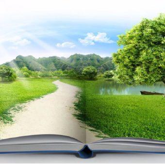 educacao-ambiental-em-perspectiva-transversal